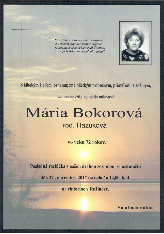 Parte p. Bokorová